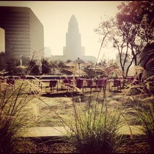 Morning in LA